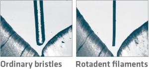 bristle-size
